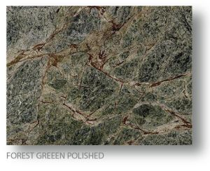 Forest Marble 6