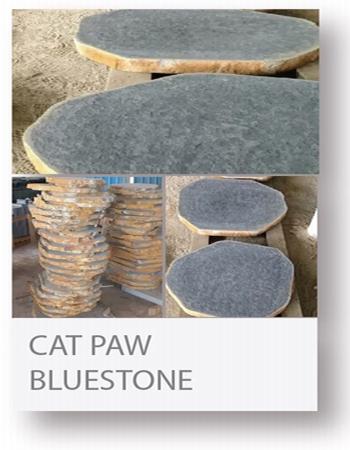 cat paw bluestone stepping stone