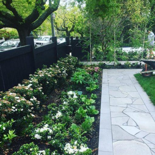 bluestone-sawn-crazy-random-paving-tiles-pavers-front-garden
