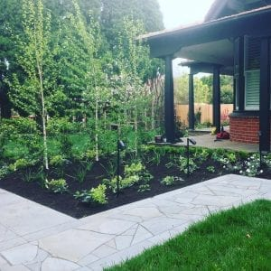 bluestone-sawn-crazy-random-paving-tiles-pavers-front-garden-path